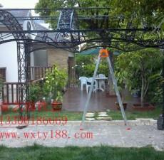 铁艺花架高清图片 (4图)